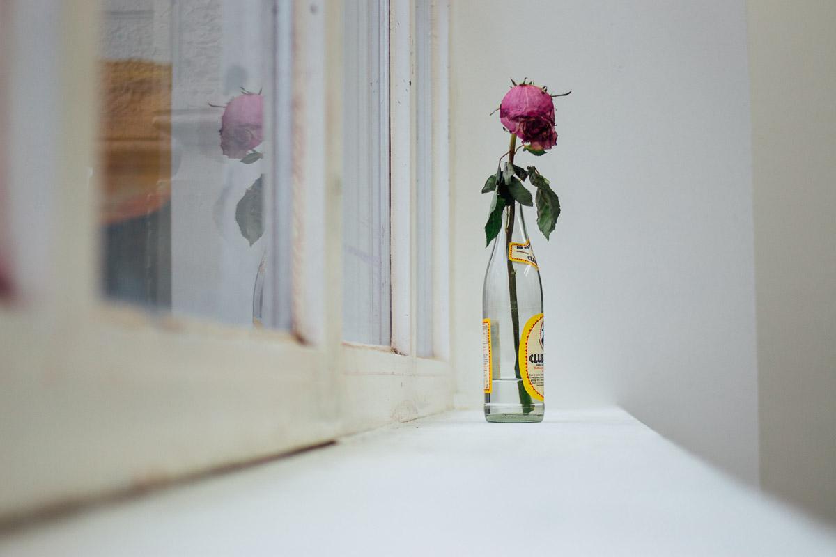 Verwelkte Rose in Flasche auf dem Fensterbrett