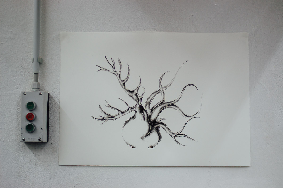 Zeichnung auf Papier an der Wand