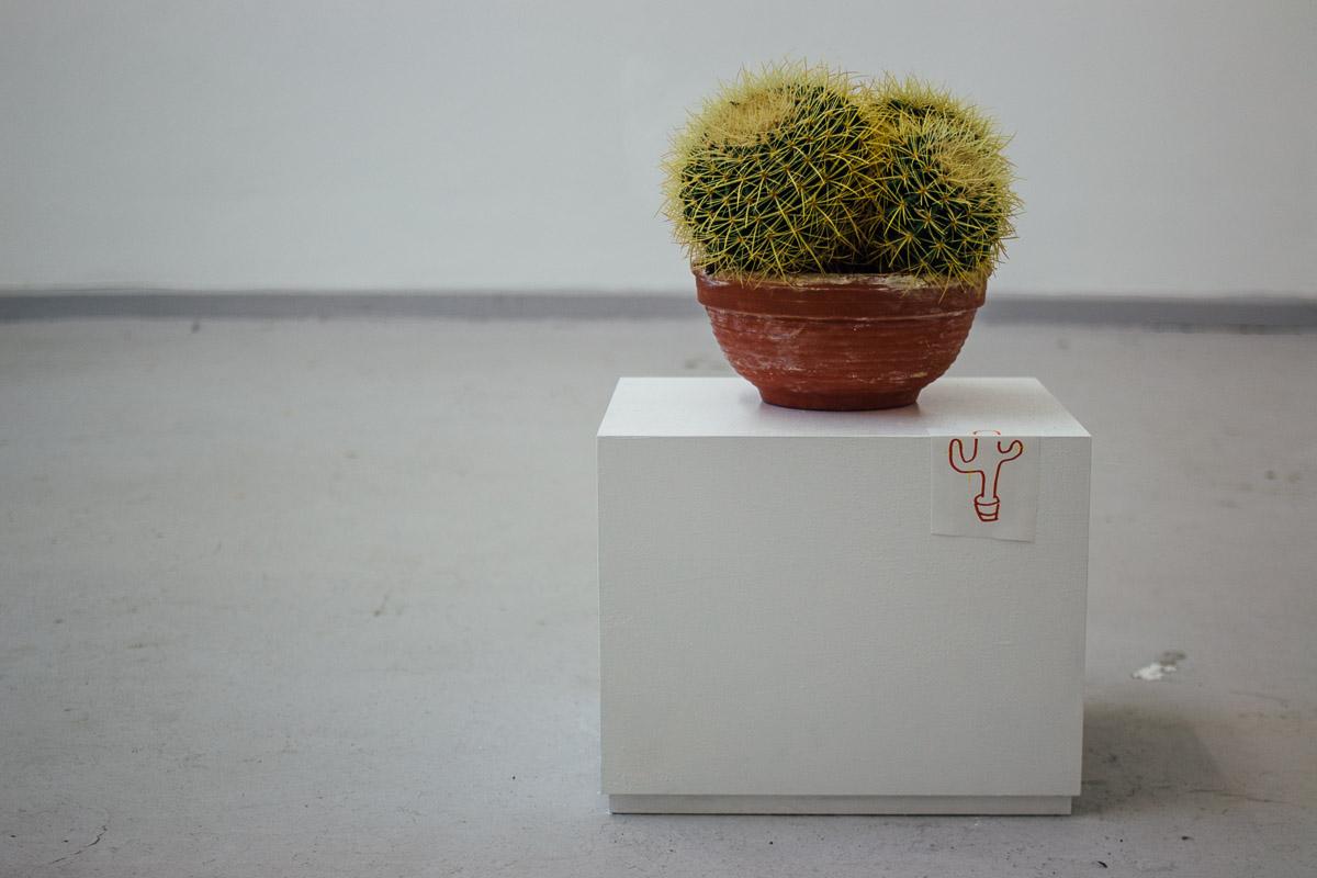Installation von Mingu Kim
