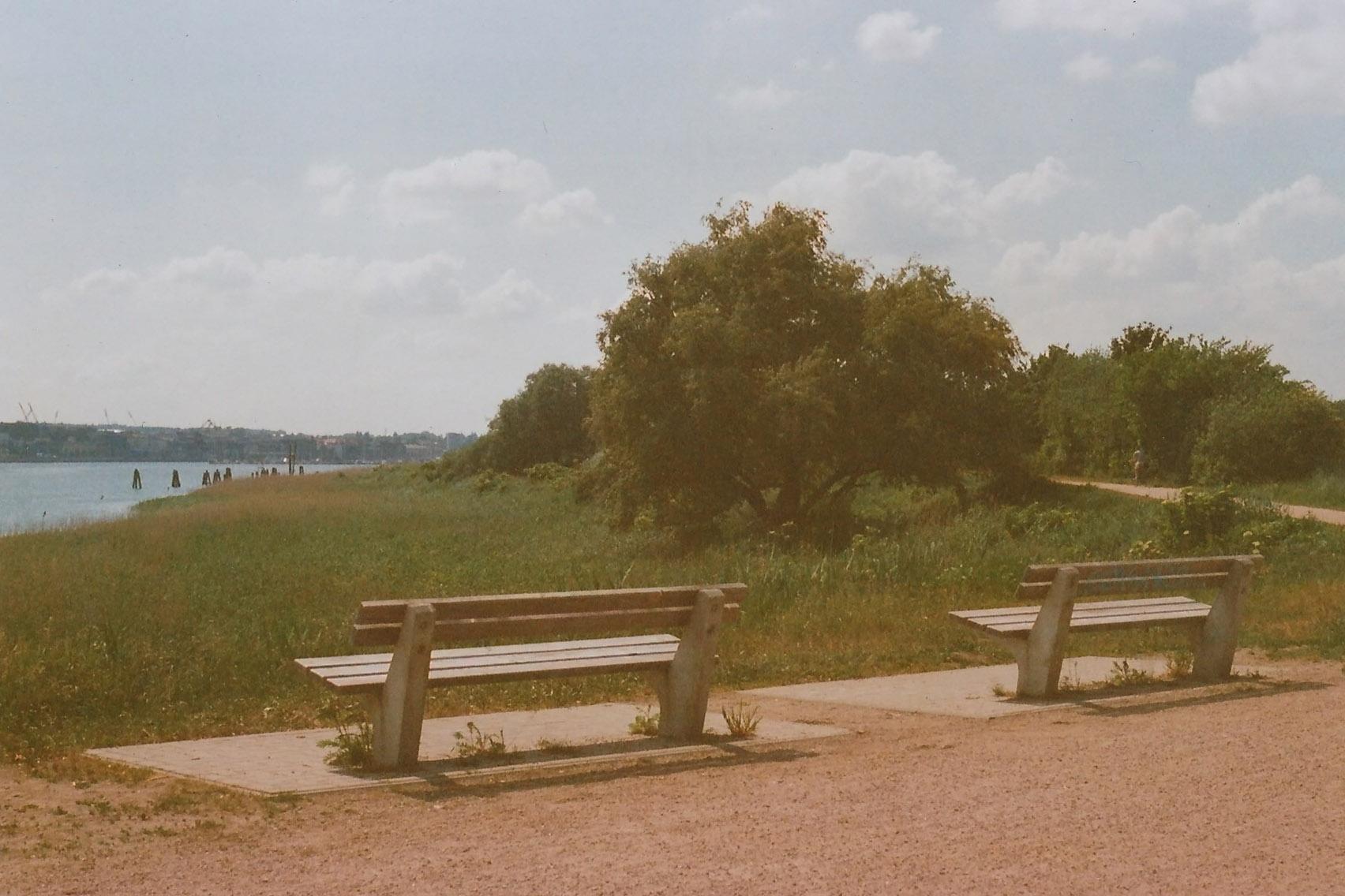 Zwei Bänke am Flussufer