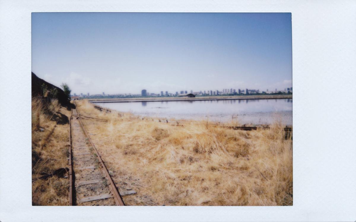 Alte Gleise am Seeufer und Skyline im Hintergrund